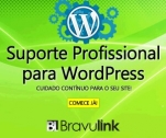 Hospedagem de site e e-mail profissional